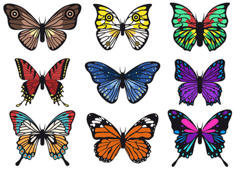 Beautiful Butterfly Vector Collections - Free vector #437119
