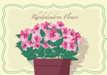 Rhododendron Flowers In Pot Vector Illustration - Free vector #437969