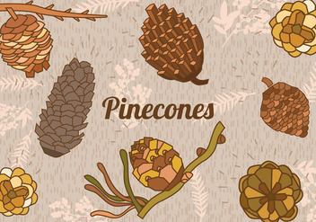 Set Of Pine Cones - vector gratuit #438089