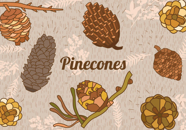 Set Of Pine Cones - Free vector #438089