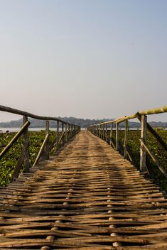 bamboo bridge - Free image #439039