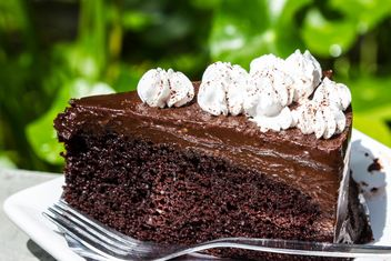 Chocolate cake - Free image #439189