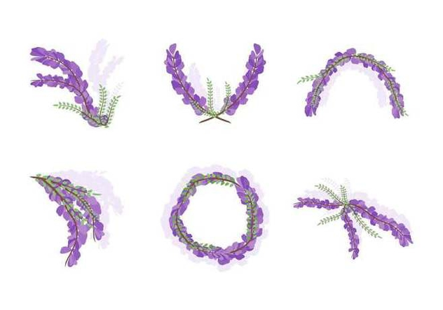 Free Beautiful Wisteria Flower Vectors - Free vector #440009