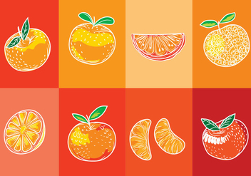 Set of Isolated Clementine Fruits on Orange Background with Art Line Style - Free vector #440109