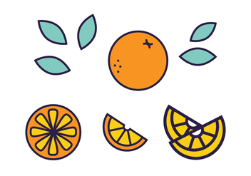 Fresh Citrus Fruit Vector - vector gratuit #440219