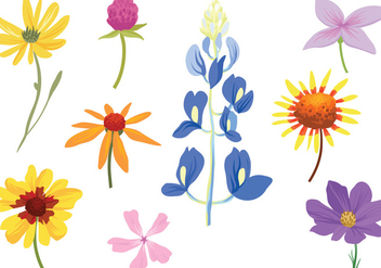 Free Colorful Wildflower Vectors - бесплатный vector #441159