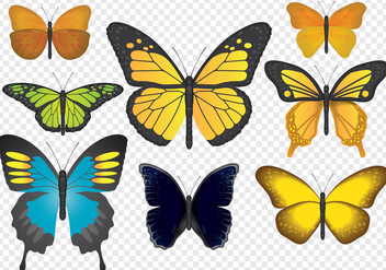 Colorful Butterflies - Free vector #441399