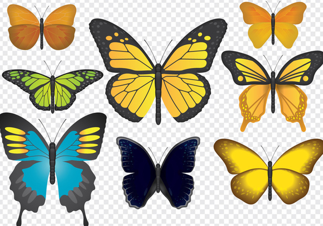 Colorful Butterflies - vector #441399 gratis