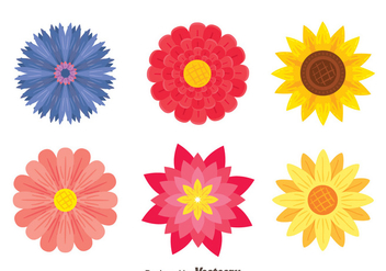 Beautiful Flowers Collection Vector - vector gratuit #444299