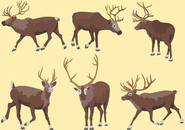 Caribou Vector Icons - бесплатный vector #445939