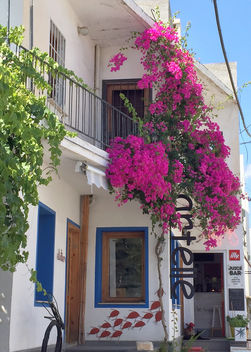 Turkey (Bodrum) Typical building with begonville - image #446699 gratis