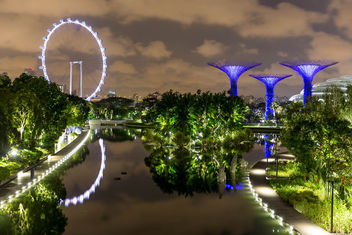 Singapur Flyer (big wheel) und Supertree Grove at Night - image #447299 gratis