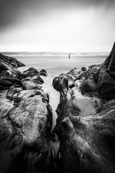 A walk on the beach - Galway, Ireland - Black and white photography - Free image #447349