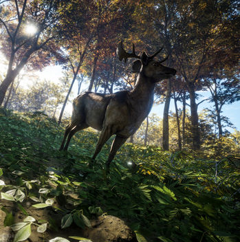 TheHunter: Call of the Wild / Did I Hear Something? - image gratuit #447499