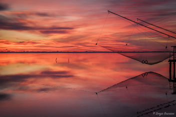 Fishing Net - image gratuit #449279