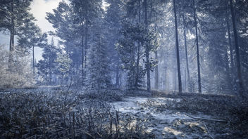 TheHunter: Call of the Wild / Snowy Trees - image gratuit #450109