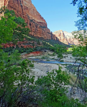 Along the Virgin, Zion NP, 2014 - Kostenloses image #451089