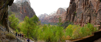 Zion National Park.Utah, - бесплатный image #451129