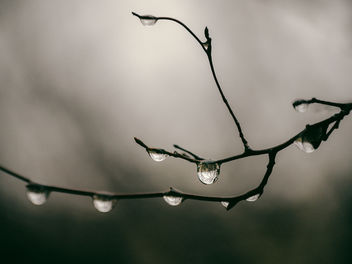 Rain and gloom - image #451499 gratis