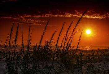 Sunset Over the Dunes - Free image #451689