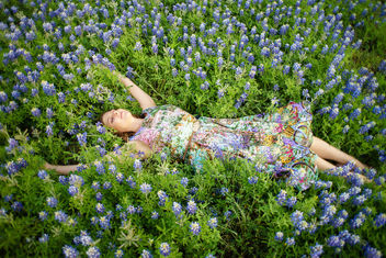 Courtney with bluebonnets - image gratuit #453169