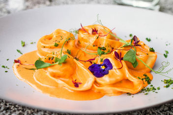 Tortellini with sauce and flowers. Close up.jpg - image #454729 gratis
