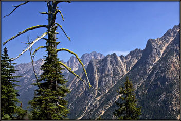 High in the Cascades - бесплатный image #455709