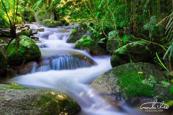 Little Water #3 - Wooroonooran National Park - Free image #457559