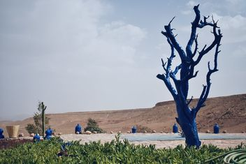 Tree of Blue - Kostenloses image #462119