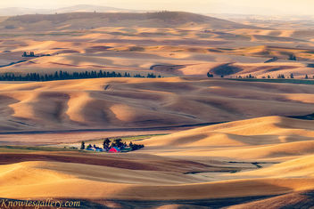 Sunrise over the Palouse country of Eastern Washington with farm and red barn - image gratuit #463479