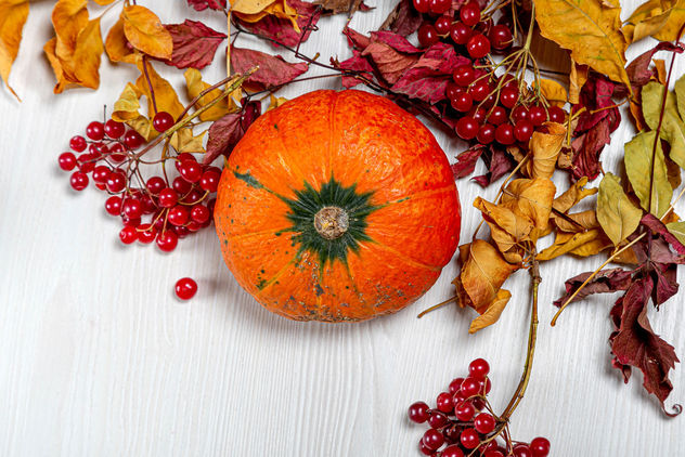 Top view ripe orange pumpkin with viburnum berries and dry leaves - image #464509 gratis