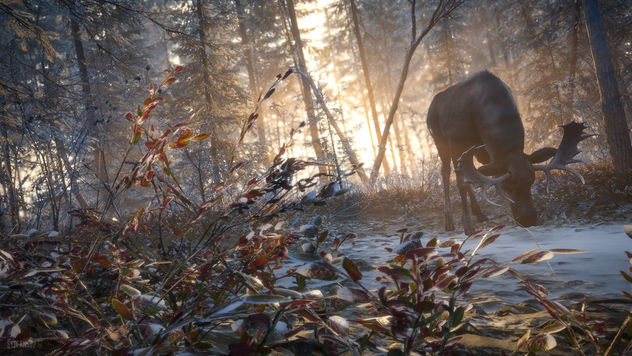 TheHunter: Call of the Wild / Hungry Winter - Free image #467929