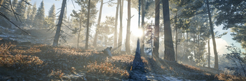 TheHunter: Call of the Wild / A Beautiful Morning - image #471209 gratis
