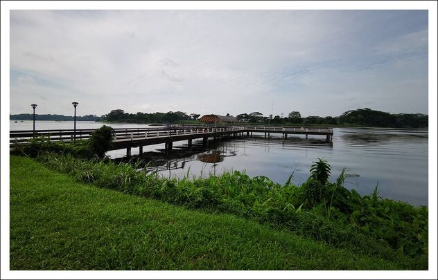 lower seletar reservoir - image #473499 gratis